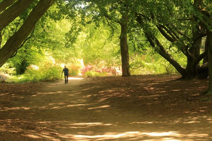 2019 05 11_CapitulatieWandel tocht Wageningen Arboretum